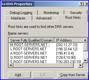 Root Hints for DNS Configuration Windows Server 2003 query