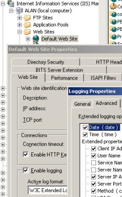 IIS W3C Extended Log File Format Logfiles