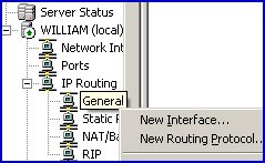 RRAS, RAS IP routing, General, New Routing Interface
