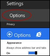 Windows 8.1 IE 11 Options