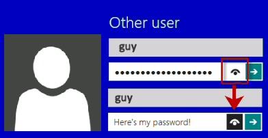 Windows 8 Password Eye